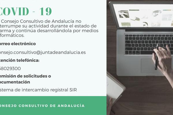 El Consejo Consultivo de Andalucía celebra sus sesiones de forma telemática.